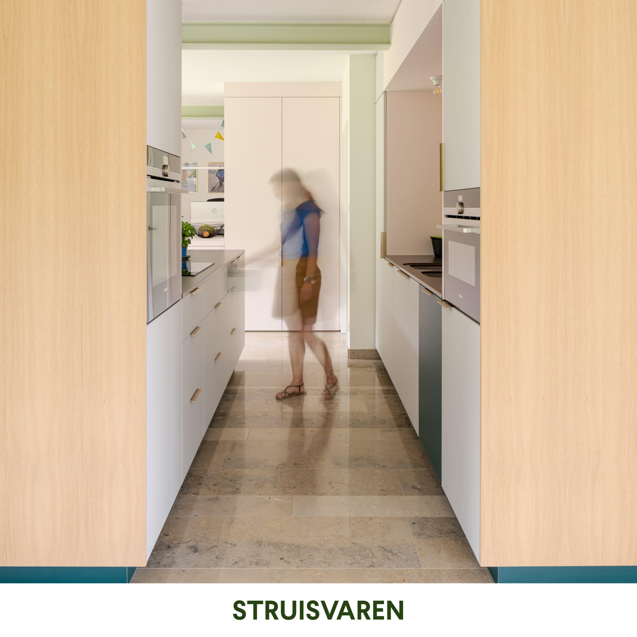 studioHAAN_STRUISVAREN